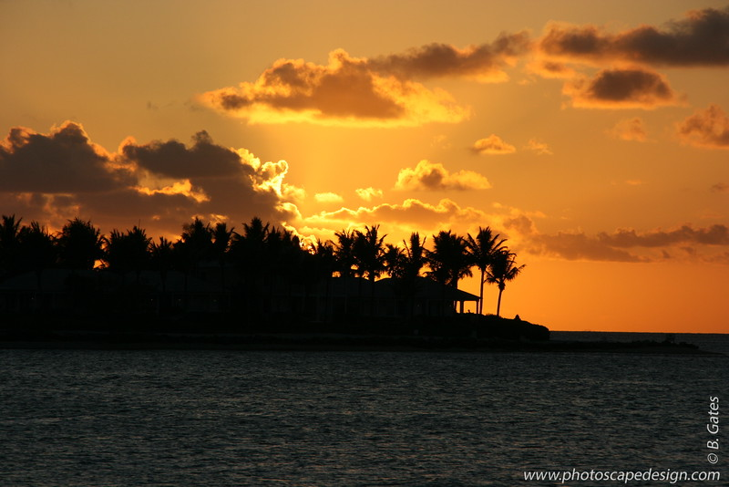 Florida: 2008