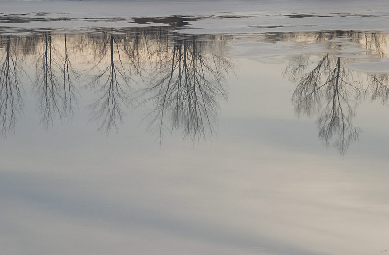 winter-reflections.jpg