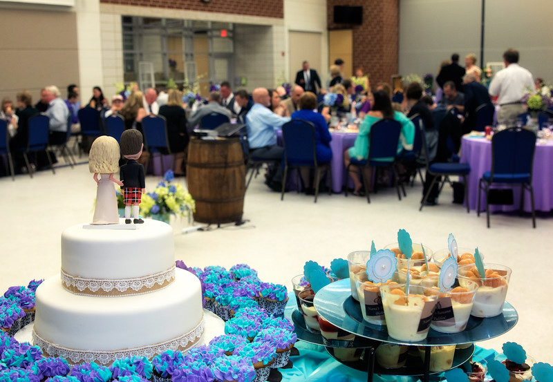 View of the Crowd from the Cake.jpg
