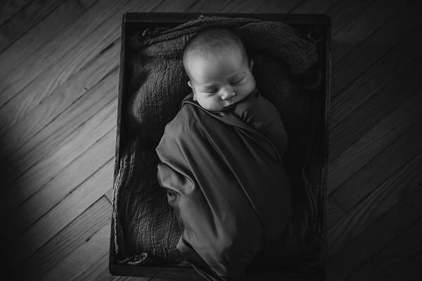 may newborn 2019