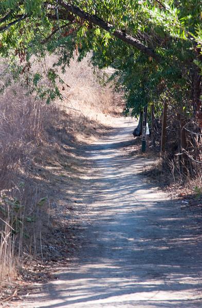 Peter's Canyon 11-03-09