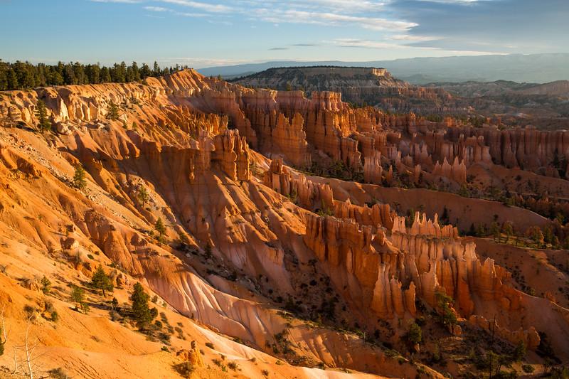 WVWS_Bryce Canyon-5965.jpg