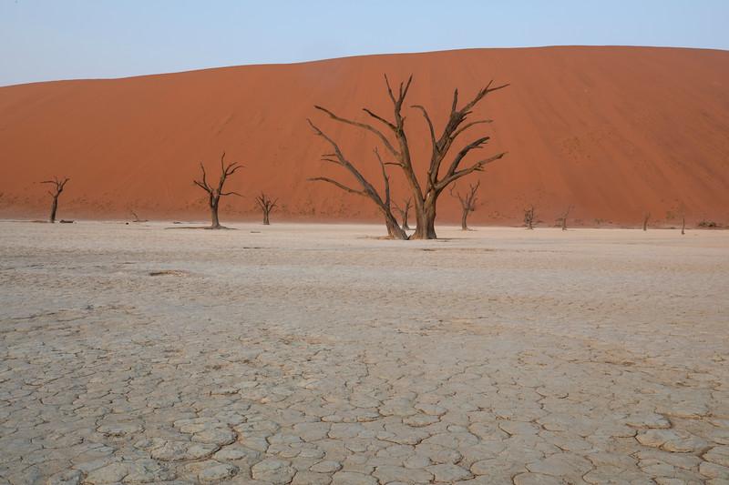 Namibia 69A4971.jpg
