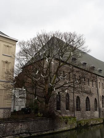 20170228_Gent