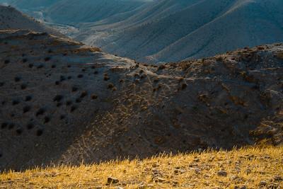 JUDEAN DESERT outings