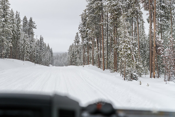 Snow Road, South of Old Faithful