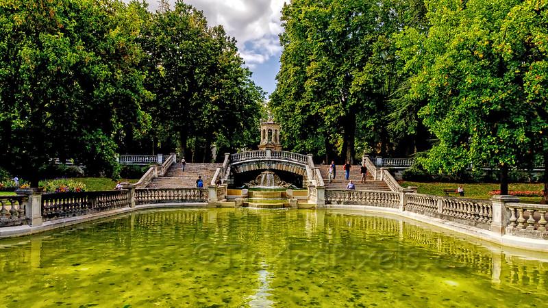 Darcy Park