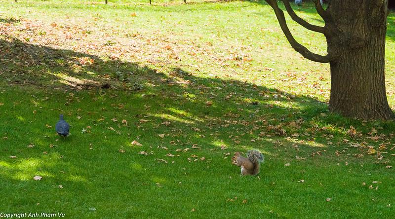 London September 2014 179.jpg