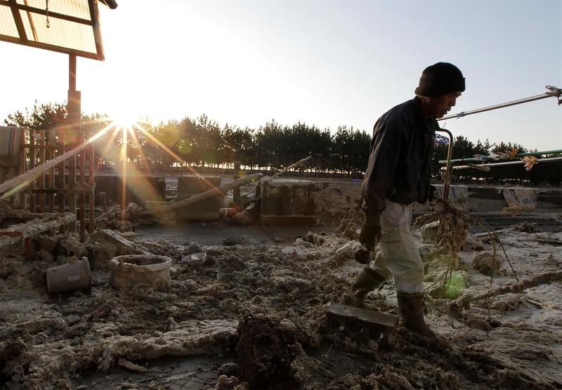 JapanEarthquake2011-239.jpg