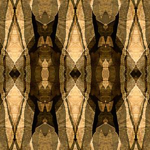 Stone Spirits Series