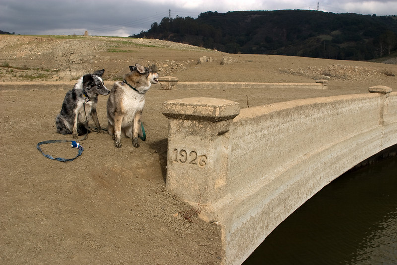 Boost and Tika sit atop a couple of feet of silt that have covered the bridge's roadbed.