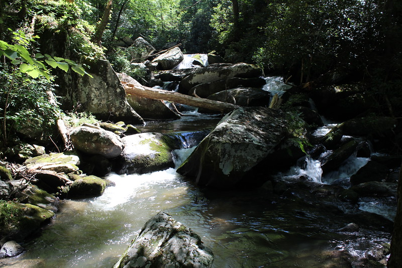 Yellow Creek 027.JPG
