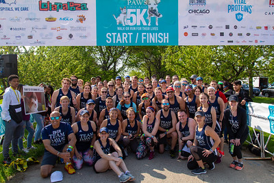 2019 PAWS Chicago Run for Their Lives