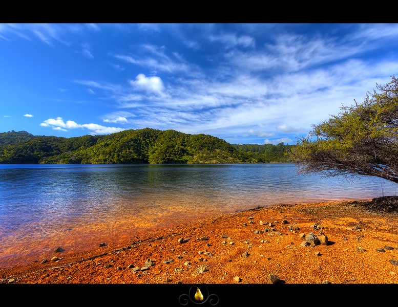Mangatawhiri:  Mangatawhiri is one of 10 reservoirs that supply Auckland with drinking water. Which is why I was in no great rush to dip my feet in to cool off. I'd never be able to drink tap water again if I did.  more at my blog