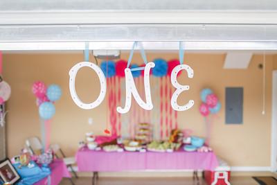 Sawyer : First Birthday Party