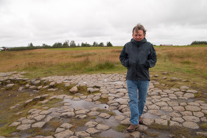 the tops of basalt columns in a sheep meadow - Kirkjugólf (Chruch floor).  This was just outside the town of Kirkjubæjarklaustur