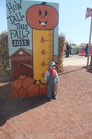Oct 15 pumpkin patch