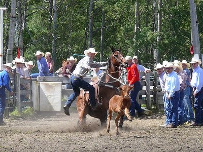 Calf Roping Section 2
