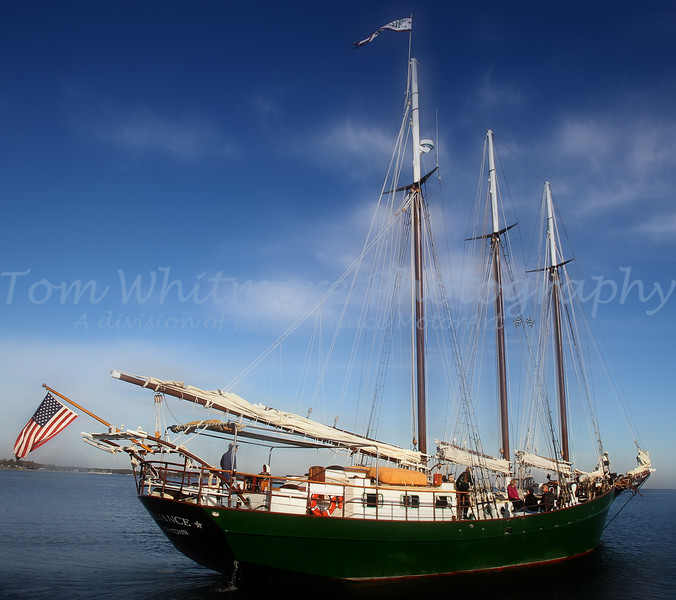 Alliance  Tall Ship