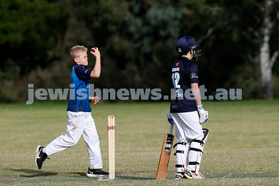 Maccabi U 13 Cricket Grand Final v Kew