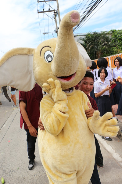 2014-11-14 Surin Elephant Welcome Feast 517.JPG