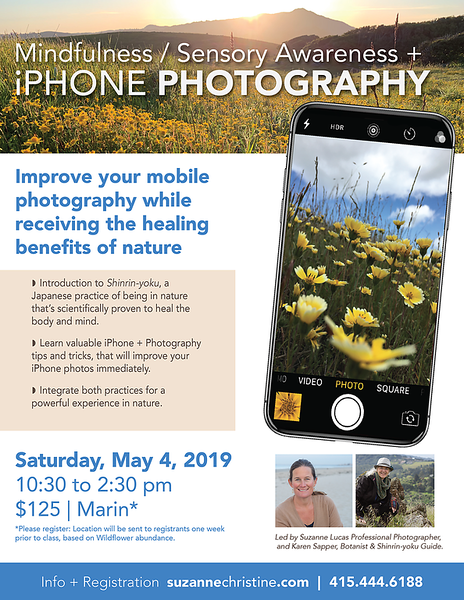 Spring Wildflower Workshop 2019-01.png