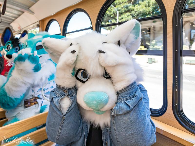 SB Trolley Meet 2019-10-05-037.jpg