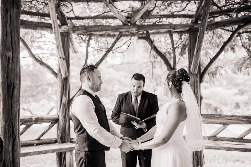 Vicsely & Mike - Central Park Wedding-18.jpg