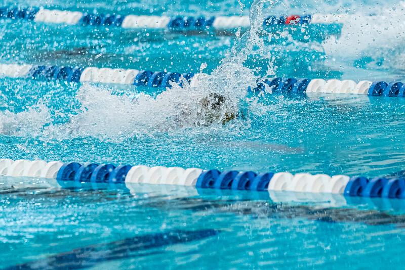 KO_swim_dive-03799.jpg