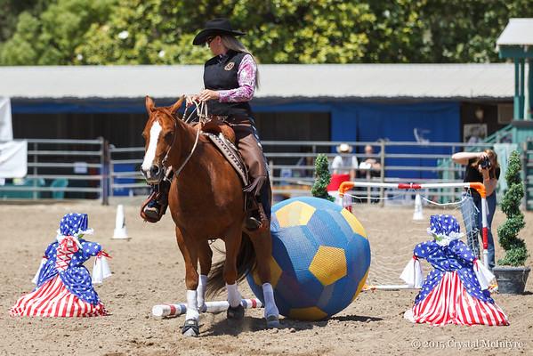 Super Horse Challenge