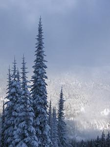 2007-01 Snowboarding