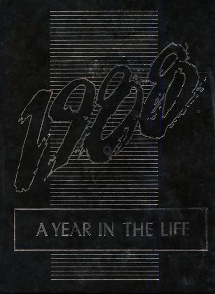 Owego 1988