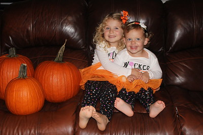 Little Pumpkins 2016