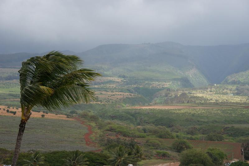 2012 Maui Trip