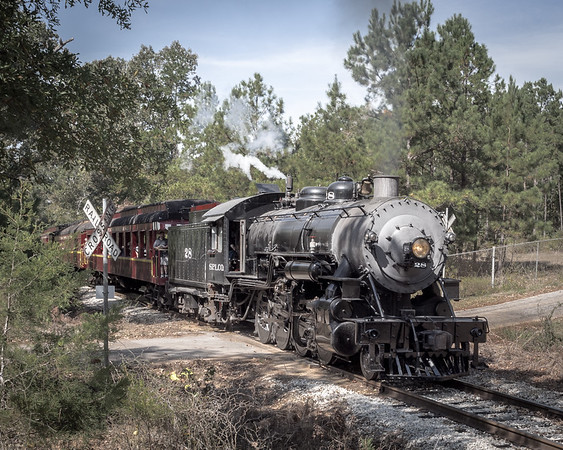 Gallery: Trains