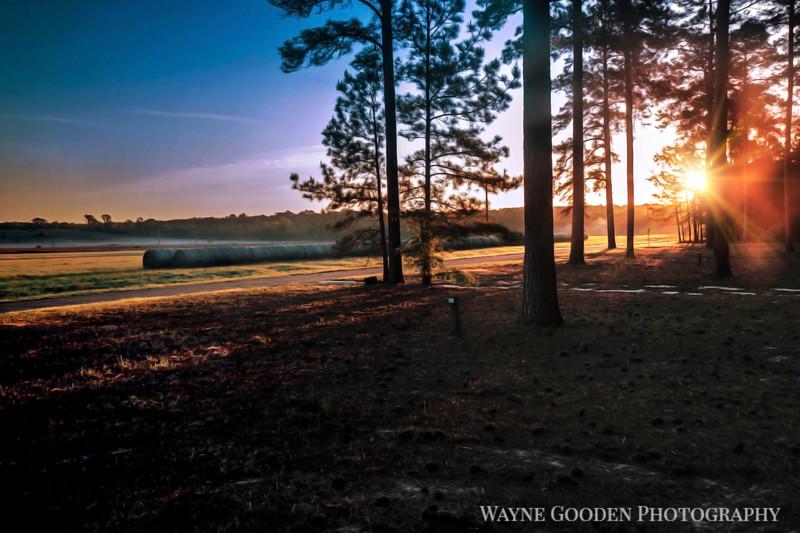 East Texas Sunrise