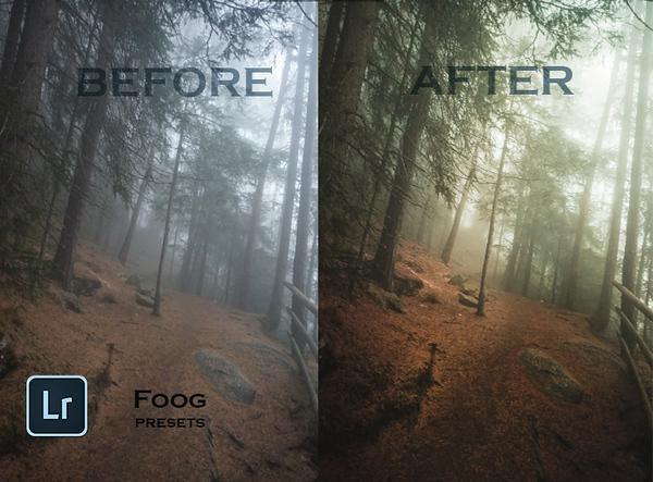 fog (kopie) kopie.jpg