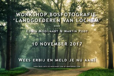 2017-11-10 Workshop bosfotografie (Dutch)