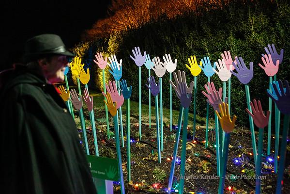 Lewis Ginter Botanical Garden Christmas Lights 12/11/13
