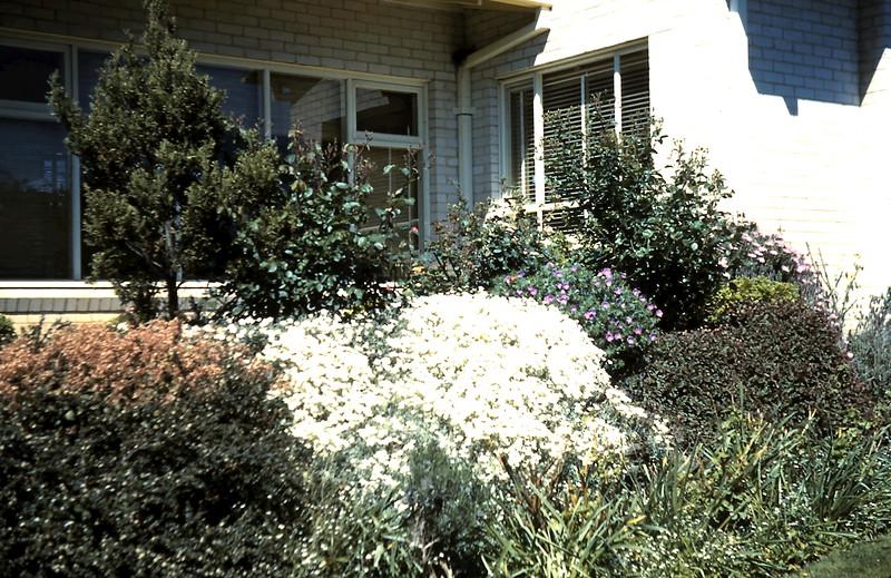 1960-10 (17) Front garden @ Prices.JPG