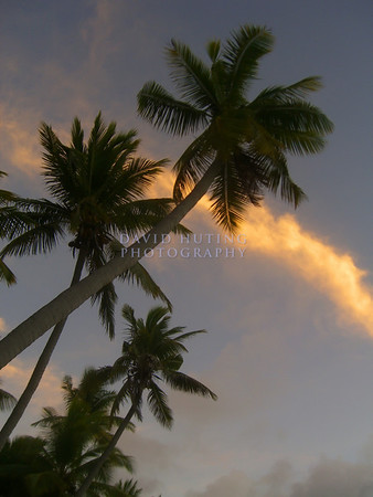 Fiji Islands (2006)
