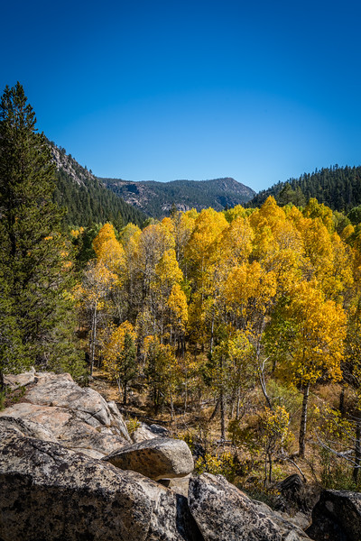 fall-mountains-color-leaves-rocks-10.jpg