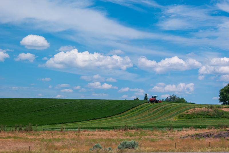 Hay Farming Idaho