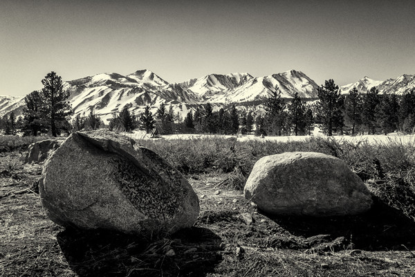 April 3 - Rocks, trees and mountains, Mammoth Lakes, CA.jpg