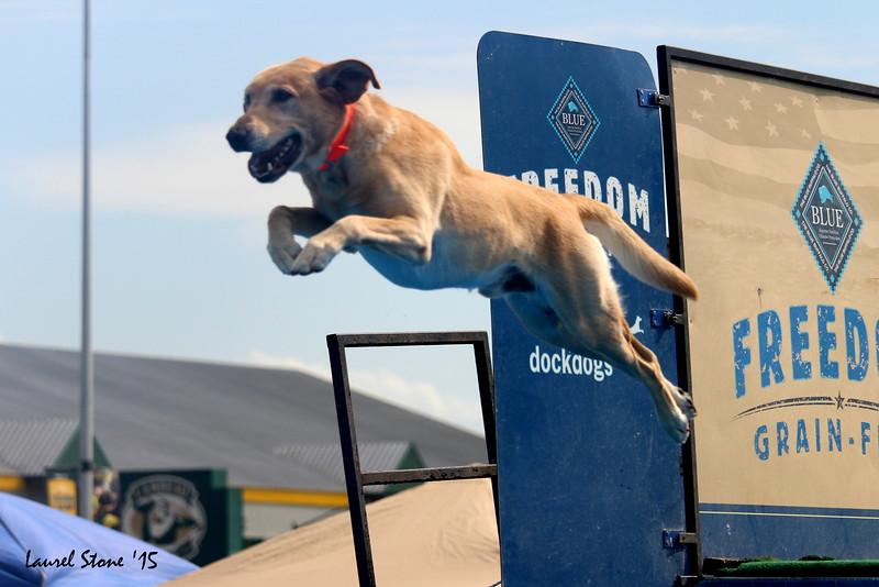 2015.8.21 Dock Dogs Lambeau-064.JPG