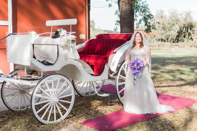 ELP0312 DeRoxtro Oak-K Farm Lakeland wedding-862.jpg