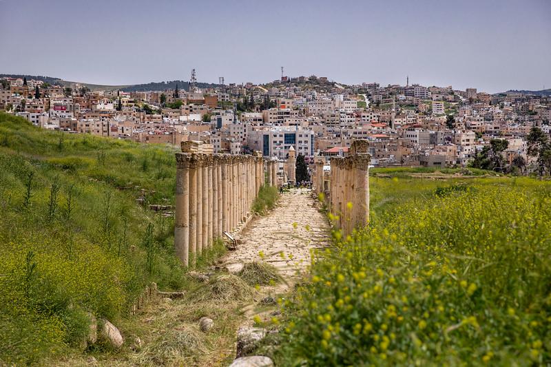 Jerash │ The South Decumanus