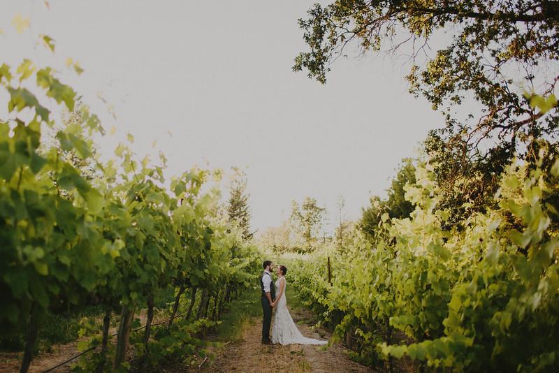 Julia and Pat's Vineyard Wedding-65.JPG