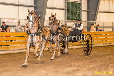 Grange Fair Parade & Draft Horse Cart - The 142nd Annual Centre County Grange Fair; Thursday 8-25-2016