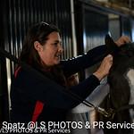 Scarlett Siskind @PBIEC Pony Island with Palm Beach Riding Academy
